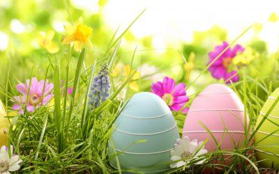 Petite réflexion en ce temps de Pâques